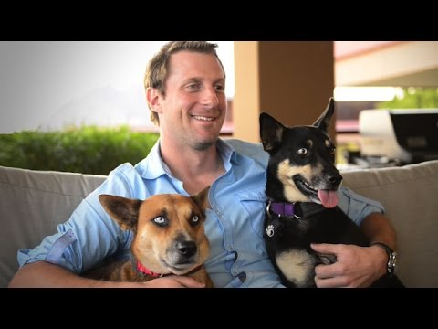 Max Scherzer: Help pets and people with Pets For Life