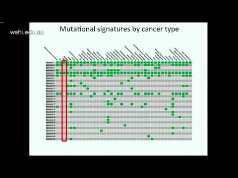 Stratton M (2015): Signatures of mutational processes in human cancer