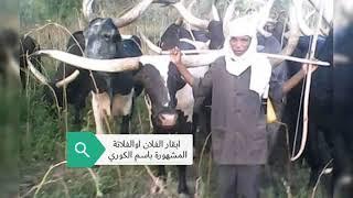 الفلاتة اوالفلان في السودان 13