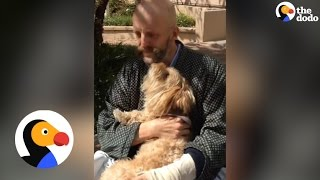 Harry Potter Actor Reunited With His Dog | The Dodo