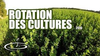 Rotation des cultures, améliorer la fertilité du sol - 2016