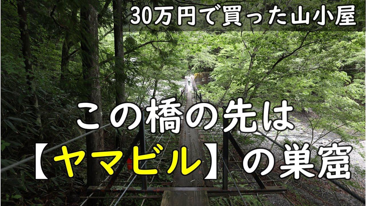 【30万円で買った別荘】たくさんのヒルに囲まれました。