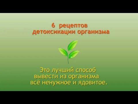 Сельдерей для мужчин - источник здоровья и мужской силы