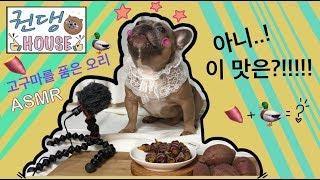 [권댕HOUSE]강아지 먹방 ASMR 프렌치불독 쿤,뽀…