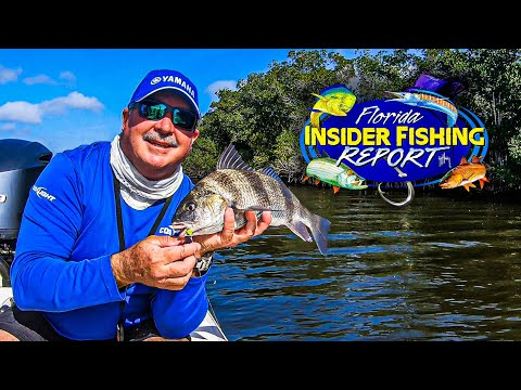 FISH ON!! Here's Your Central East Fishing Report With Captain Jim Ross