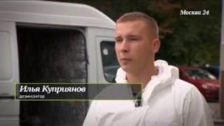 видео служба по борьбе с насекомыми в Москве