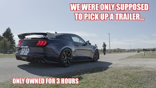 We Thrashed a BRAND NEW Shelby GT500 Fresh Off The Lot!