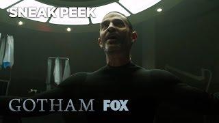 GOTHAM | Rebirth