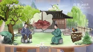 [百家说故事]种树与治民  课本中国 - YouTube