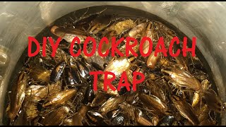 DIY Cockroach Trap with proof!