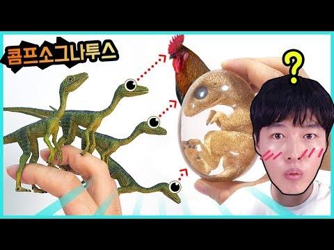 콤프소그나투스 vs 쥬라기월드 공룡배틀 장난감 놀이에요. Compsognathus jurassic world dinosaur battle toy [히히튜브]