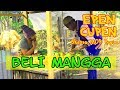 EPEN CUPEN 8 Mop Papua : BELI MANGGA