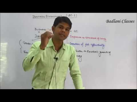 CS : Foundation : Business Environment : Lecture 1