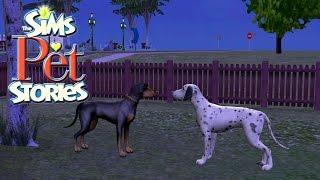 🐕The Sims Historie ze Świata Zwierząt ( Alicja )#4 -