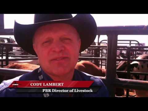 Cody Lambert: 'He's the best bull'