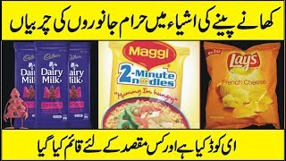 What Are E Codes In Food Are They Haram or Halal In Urdu Hindi