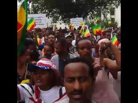 Ethiopians in Washington DC rally protesting TPLF's brutality in Ethiopia 08 09 16 Addis Dimts Radio