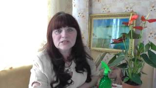 508. Мистика на Талакане Амурской обл. История о шаманке.  Амурка онлайн