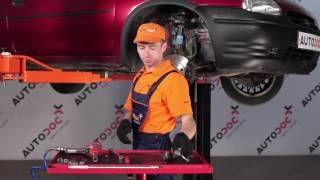Daihatsu Terios J1 techninė priežiūra - videopamokos