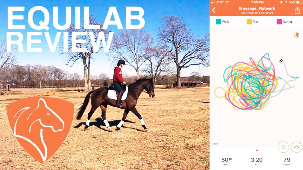 TRACKING MY RIDE? //Equilab equestrian app review!