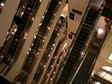 Otis Scenic Elevators at Macy