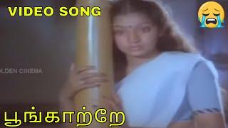 பூங்காற்றே   Poongatre   Mannuketha Ponnu   Pandian   Ilavarasi   Gangai Amaran   HD