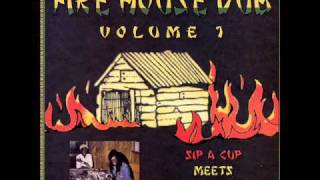 Sip A Cup Meets Negus Roots - Journey To Dub