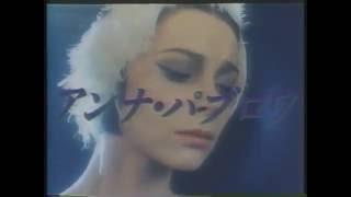日本ヘラルド映画の時代【2】1978年(昭和53年)~1989年(平成元年)