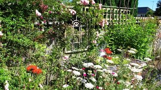 'The Cottage' English Garden in Surrey - 'Summer'