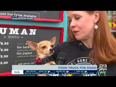 Seattle has a food truck for your dog