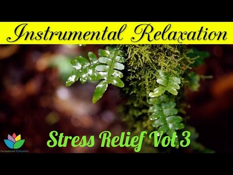 Relaxation Music For Stress Relief and Healing, Positive Energy Vol 3 - Relaxing Piano, Guitar Music