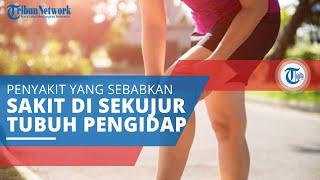 Nyeri Pinggang Akibat Autoimun | Live Webinar  | 23 Mei 2020.