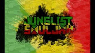 RAGGA / REGGAE JUNGLE MIX - Technoraver