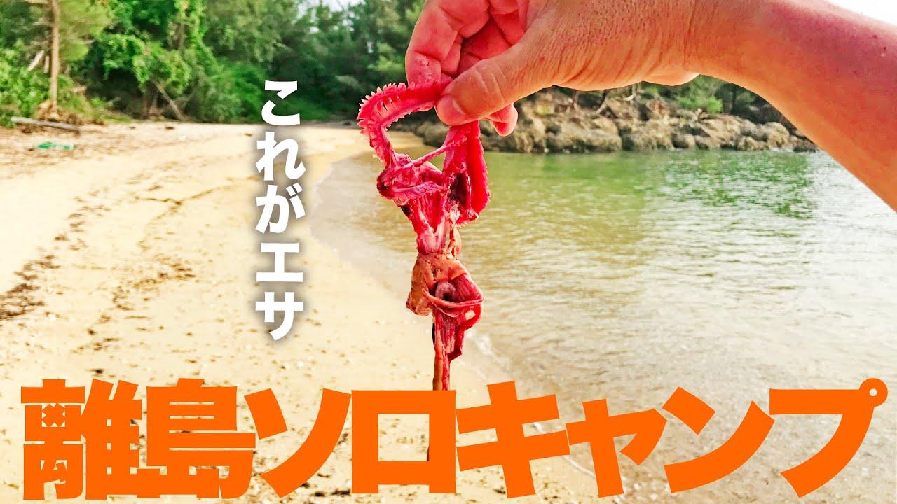 釣った魚の内臓をビーチに仕掛けてみると・・【リーフゲーム後半】
