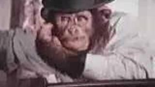 Pg Tips Uk Commercial (c.1971)