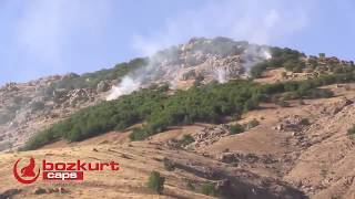 Kürdistan kuracaklardı, kobrayı görünce tomanı sıyırıp teslim oldular :)