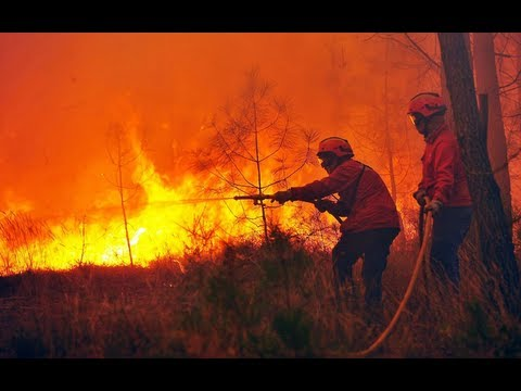 Forest fire rages in Portugal
