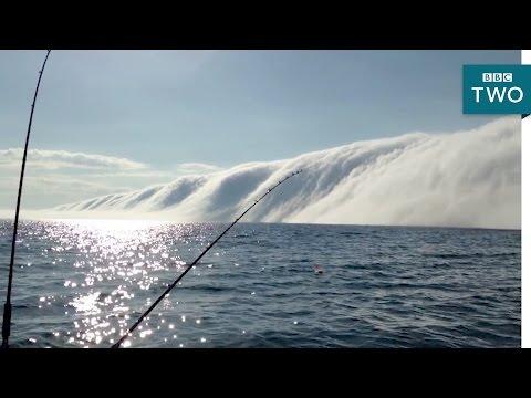 Fog tsunami   Natures Weirdest Events: Series 5 Episode 5  BBC Two