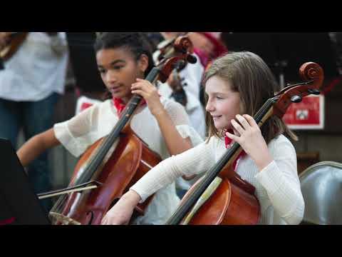 Davis Waldorf School | Annual Giving