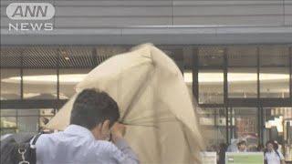 関東甲信などが梅雨入り 西・東日本で大雨の恐れ(19/06/07)