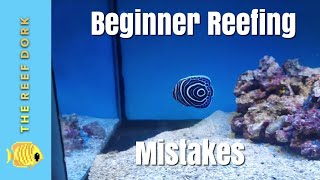Top 5 Beginner Reefing Mistakes (And How To Avoid Them)