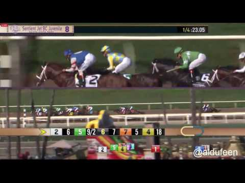 CLASSIC EMPIRE  by Pioneerof the Nile -
