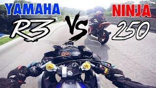 #463 KARAK MENJERIT YAMAHA R3 VS NINJA 250