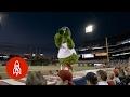 Phillie Phanatic May Be the World's Wackiest Mascot