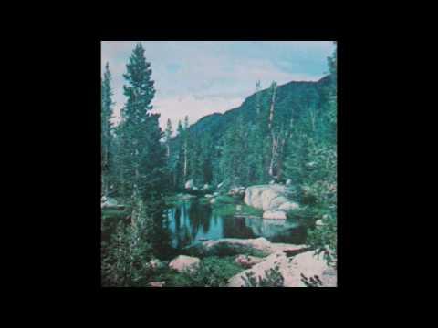 Peter Davison - Forest IV