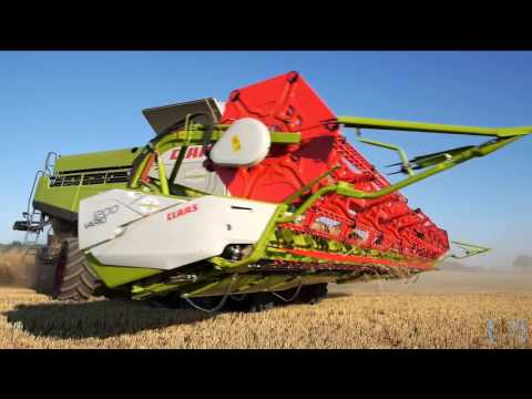 Big farming   Wheat Australia big lexion   Gran agricultura