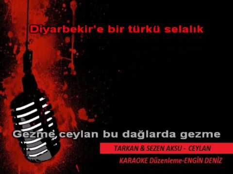 Tarkan & Sezen Aksu   CEYLAN - #KARAOKE