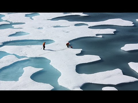 Leading Ocean Researcher Says We Could See An Iceless Arctic in 2017
