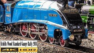 Echills Wood Standard Gauge Rally 2018 in 4K HDR - 7 1/4 inch Gauge Live Steam Railway