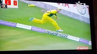 vuclip Mexwell best catch in odi cricket